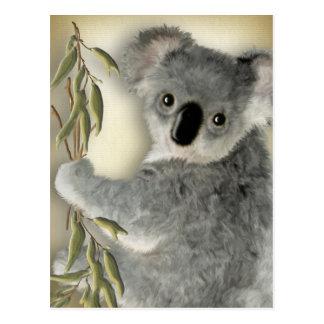 Cute Koala Postcard