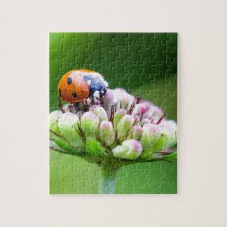 Cute Ladybug Jigsaw Puzzle