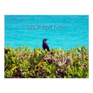 Cute Little Black Bird Poster