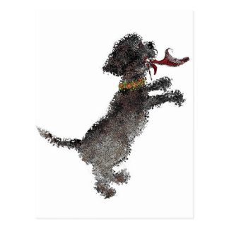 Cute Little Black Dog With Red Shoe Postcard