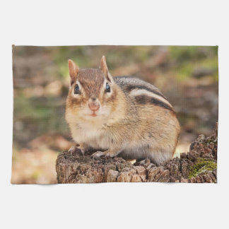 Cute Little Chipmunk Kitchen Towel