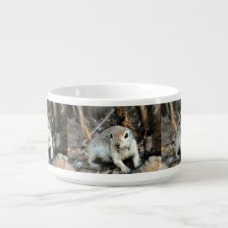 Cute Little Ground Squirrel Chili Bowl