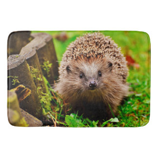 Cute Little Hedgehog in the Forest Bathroom Mat