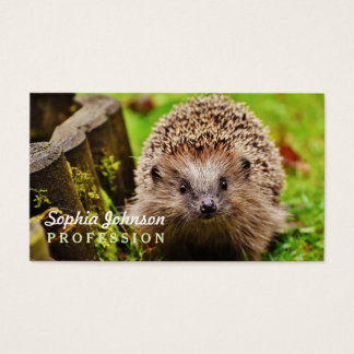 Cute Little Hedgehog in the Forest Business Card