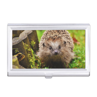Cute Little Hedgehog in the Forest Business Card Holder