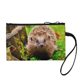 Cute Little Hedgehog in the Forest Coin Wallet