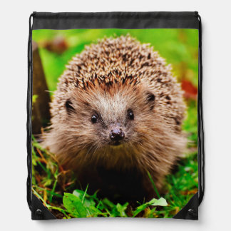 Cute Little Hedgehog in the Forest Drawstring Bag
