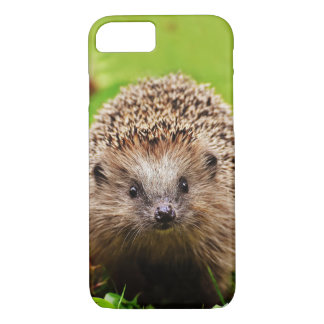 Cute Little Hedgehog in the Forest iPhone 8/7 Case