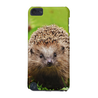 Cute Little Hedgehog in the Forest iPod Touch 5G Cases