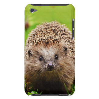 Cute Little Hedgehog in the Forest iPod Touch Cover