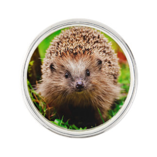 Cute Little Hedgehog in the Forest Lapel Pin