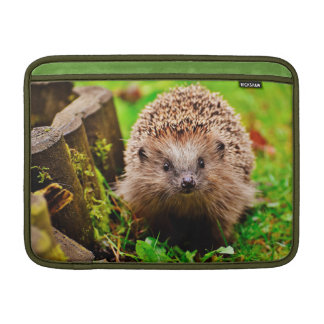 Cute Little Hedgehog in the Forest Sleeves For MacBook Air