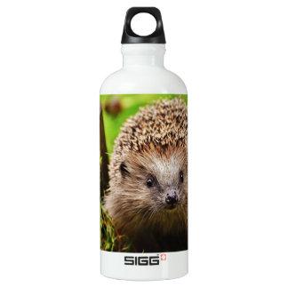 Cute Little Hedgehog in the Forest Water Bottle