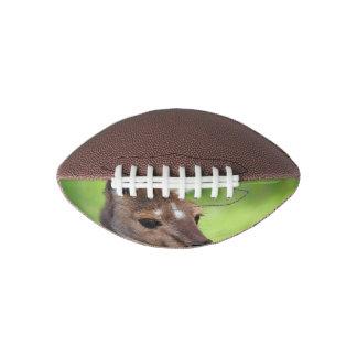Cute Little Kangaroo Football
