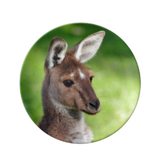 Cute Little Kangaroo Plate