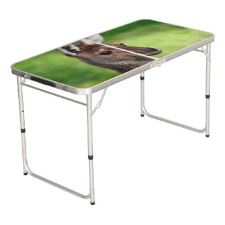 Cute Little Kangaroo Pong Table