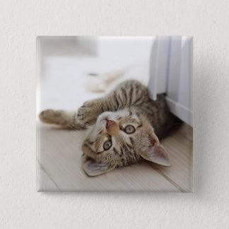 Cute Little Kitten 2 Inch Square Button