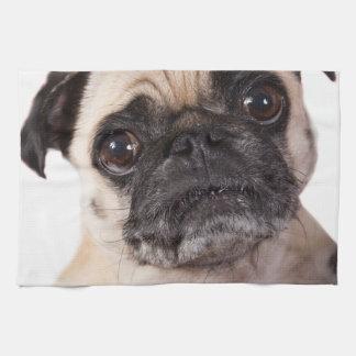 cute little pug dog kitchen towel