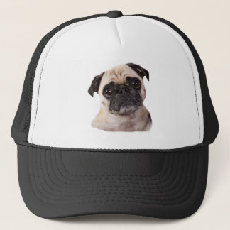cute little pug dog trucker hat