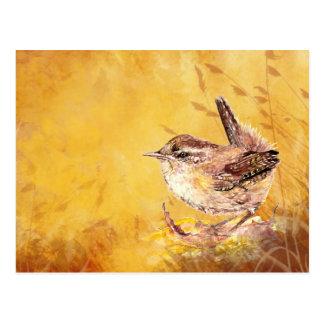 Cute Little Watercolor House Wren Bird Nature art Postcard