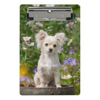 Cute long-haired cream Chihuahua Dog Puppy Photo - Mini Clipboard