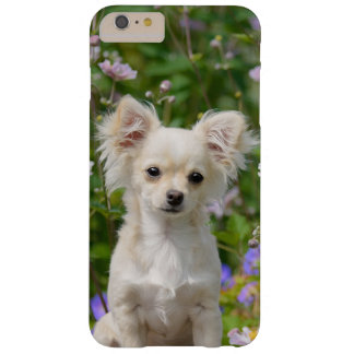 Cute longhair cream Chihuahua Dog Puppy Pet Photo Barely There iPhone 6 Plus Case