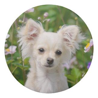 Cute longhair cream Chihuahua Dog Puppy Pet Photo Eraser