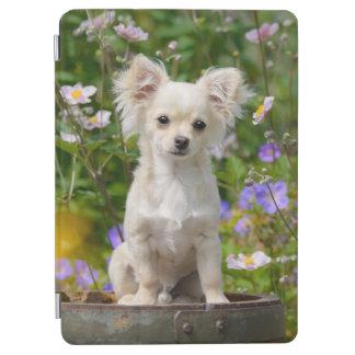 Cute longhair cream Chihuahua Dog Puppy Pet Photo iPad Air Cover