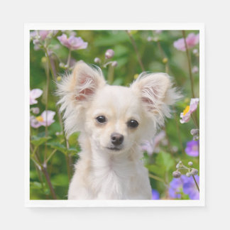 Cute longhair cream Chihuahua Dog Puppy Photo on - Paper Napkin