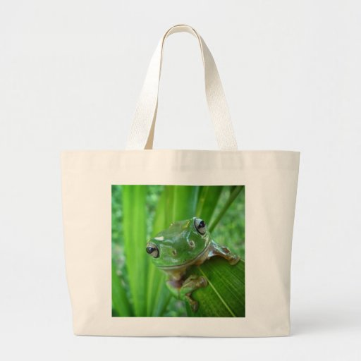 Cute Looking Tree Frog Close Up Canvas Bags