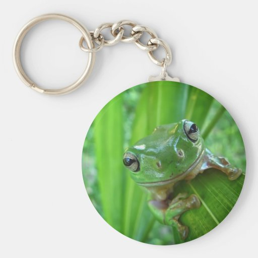 Cute Looking Tree Frog Close Up Keychain
