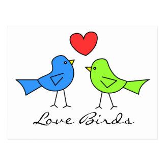 Cute Love Birds Postcard