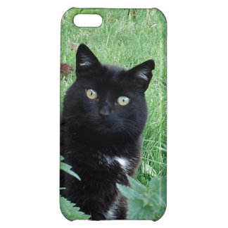 Cute Lucky Black Cat On iPhone 5C Case