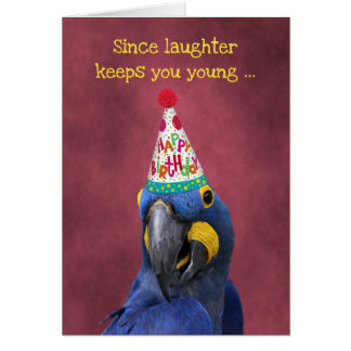 Cute Macaw Keep Laughing  Birthday Card