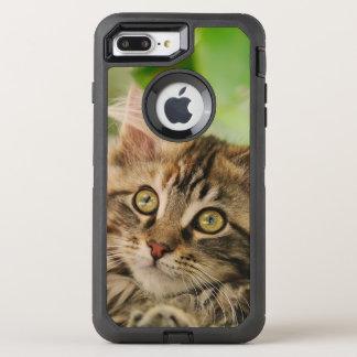 Cute Maine Coon Cat Kitten Pet Photo - Protect OtterBox Defender iPhone 7 Plus Case