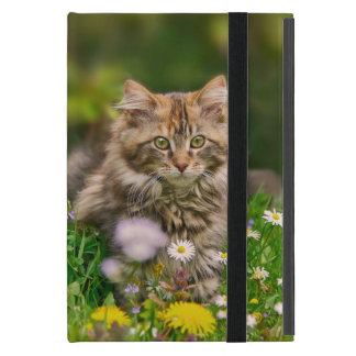Cute Maine Coon Kitten Cat Flower Meadow - Protect iPad Mini Covers