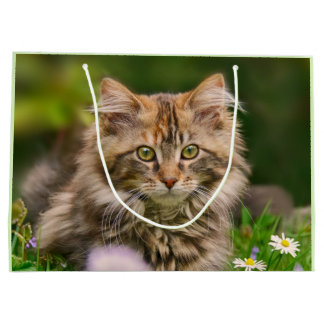 Cute Maine Coon Kitten Cat Flower Meadow  Wrapbag Large Gift Bag