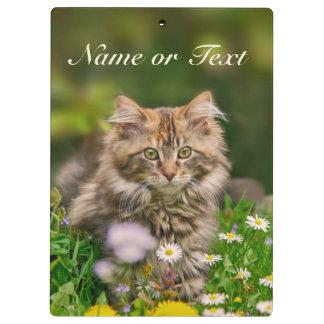 Cute Maine Coon Kitten Cat in Meadow  Personalized Clipboard