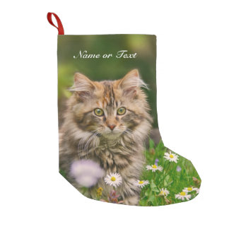 Cute Maine Coon Kitten Cat -  mantle Personalized Small Christmas Stocking