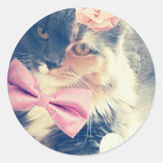 Cute Maine Coon Kitten Retro Style Classic Round Sticker