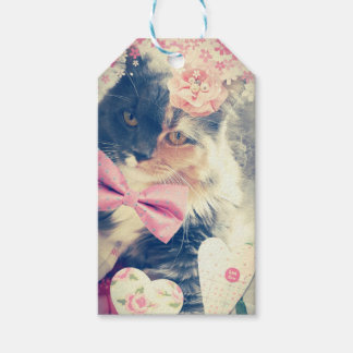 Cute Maine Coon Kitten Retro Style Gift Tags