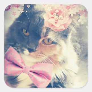 Cute Maine Coon Kitten Retro Style Square Sticker