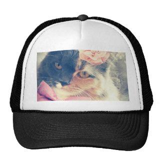 Cute Maine Coon Kitten Retro Style Trucker Hat