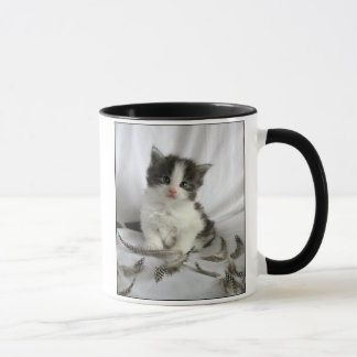 Cute Maine Coon kitten with feathers mug