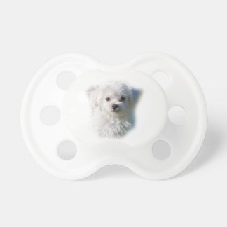Cute Maltese Dog Baby Pacifier
