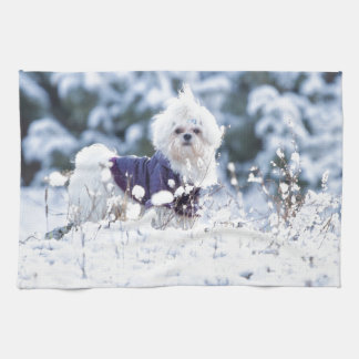 Cute Maltese Dog Kitchen Towel