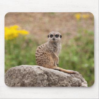 Cute Meerkat Mouse Mat