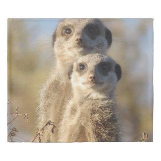 cute meerkats 1214 duvet cover