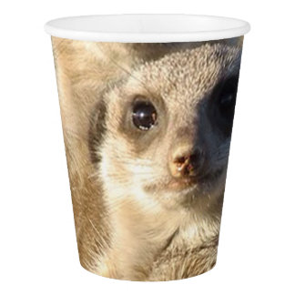 cute meerkats 1214 paper cup