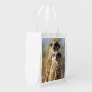 cute meerkats 1214 reusable grocery bag
